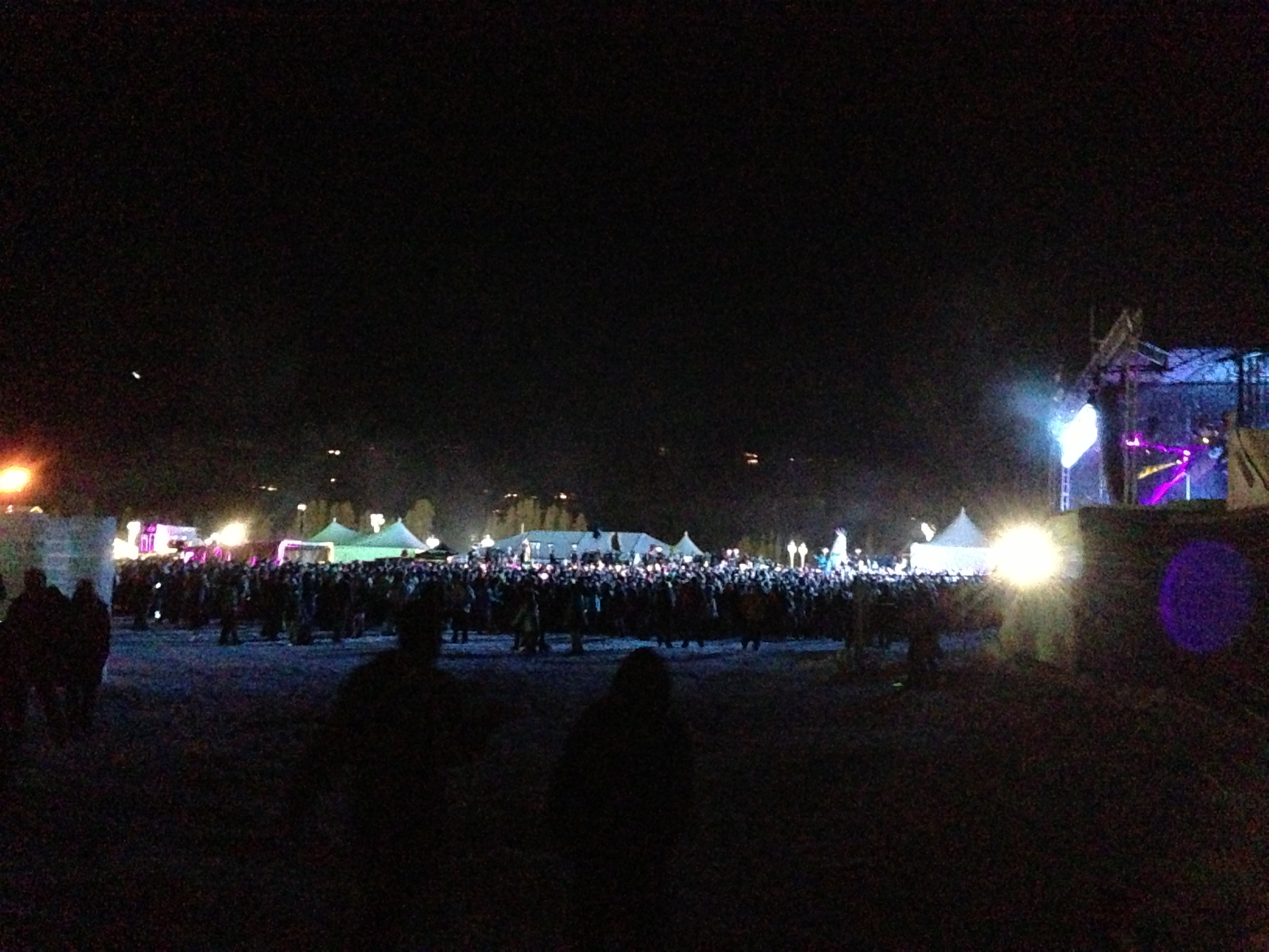 Porter Robinson's crowd