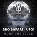 bro safari ufo burn the block