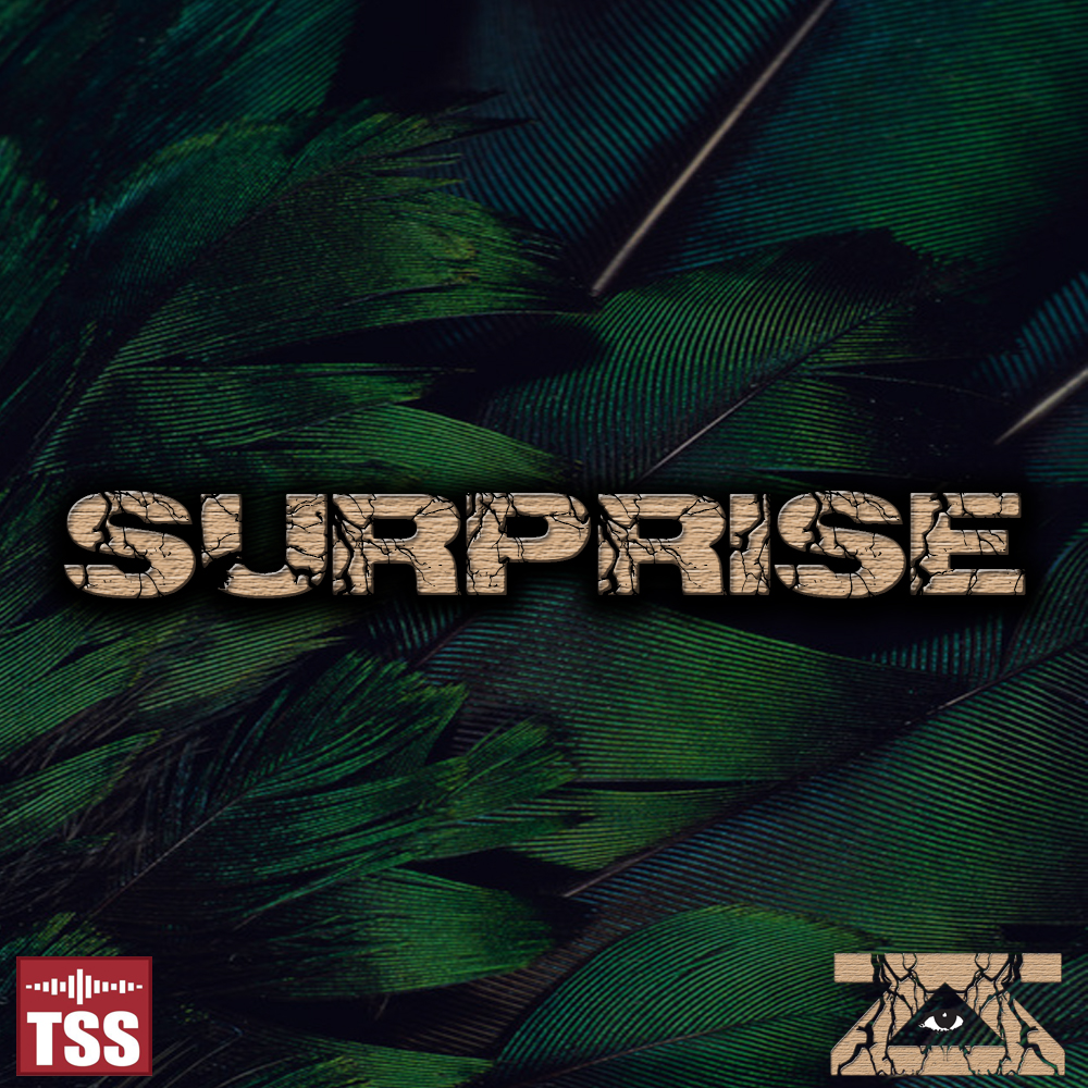 Zeke & Zoid – Surprise (TSS Exclusive)
