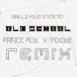 prince fox - brillz