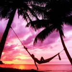 hammock_hanging_from_palm_tree_at_sunset-other