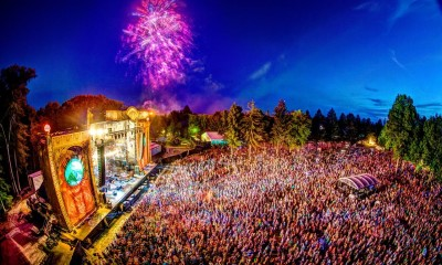 Electric_Forest_ Electric_Forest - 10