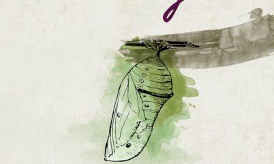 artworks-000187095143-8alo3i-original