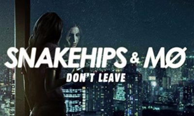 snakehips-dont-leave-2