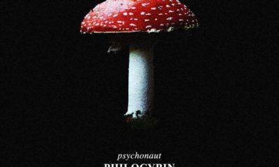 Philocybin