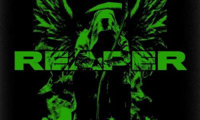 noizon reaper